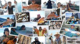 2017/2/23  本日は各釣りコースお休みです。