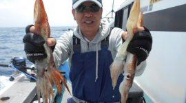 お知らせ~!!スルメイカ釣りコース5/30日(土)出船致します!挑戦者の方お待ちしております。