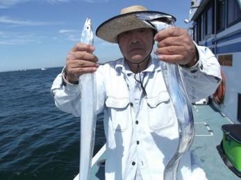 スリル満点タチウオ釣りコース!