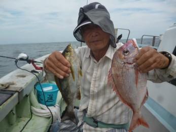 イサキ&チダイなどの色々釣れる五目釣りですね~